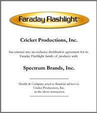 Faraday Flashlight.