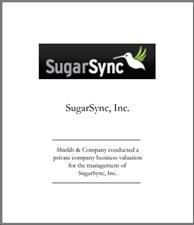 SugarSync.